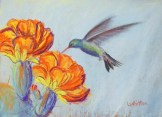 Hummingbird and Cactus (pastel) 23x31cm $80