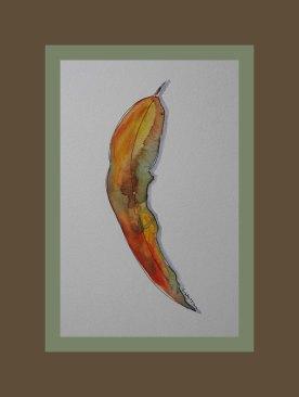 Gumleaf watercolour