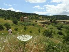 San Lorento. Sardinia