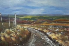 Scottish Moors - acrylic on canvas painitng