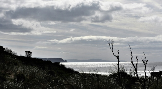 A day trip to Bruny Island