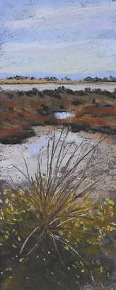 7a. Wetlands colour