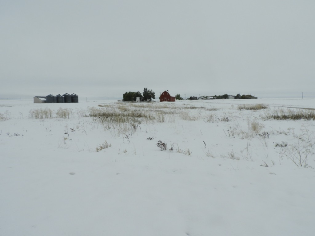 Montana plains in the snow